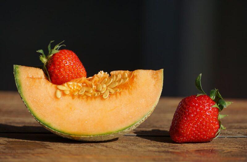 Fleuron de la production et de la vente de melons-IGP-Poitou-Charentes-Réf. 13299